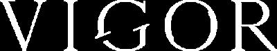 vigor_logo